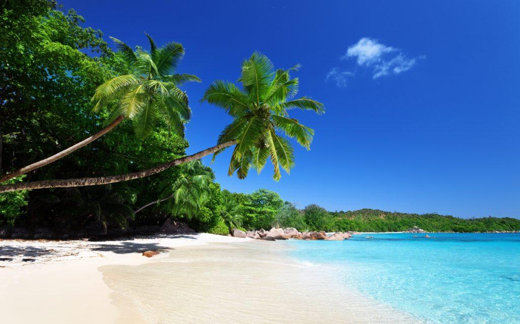 חוף בסיישל